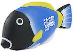 Blue Tang Fish Stress Balls